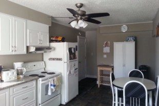 Large Newly Renovated 3 Bedroom 2 Storey Available Nov 1