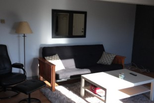 Large, very clean 1 bedroom for rent