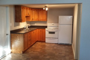 Large bright 1 bedroom lower level apt in Garson