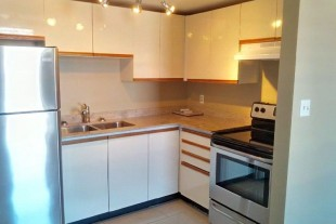 Beautiful Downtown One Bedroom Apartment