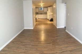 Large Bright one bedroom. Free Maid Service!!