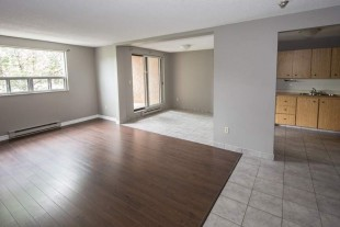 Renting apartment for July and August