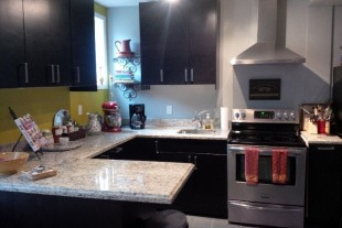 Beautiful Downtown 1 bedroom bachelor apartment for June 1, 2018