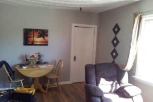 Large Bright 1 Bedroom Apt. Near Downtown!