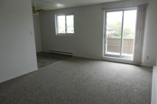 Lasalle Blvd Spacious, Spotless 1 bedroom apartment